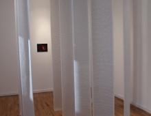 DEKODIRANJE SEĆANJA / DECODING MEMORIES (2014)